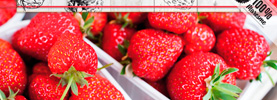 Maresme Vallalta strawberry gastronomic meetings