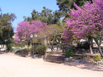 Park of Mercy